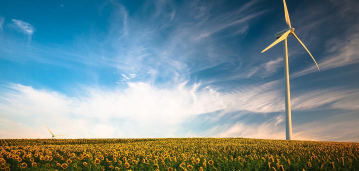Wat kun je zelf doen tegen klimaatverandering? [4*3 tips]
