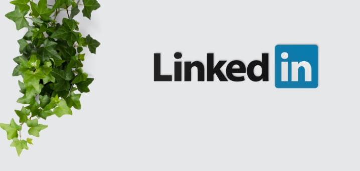 linkedin posts birdwing digital