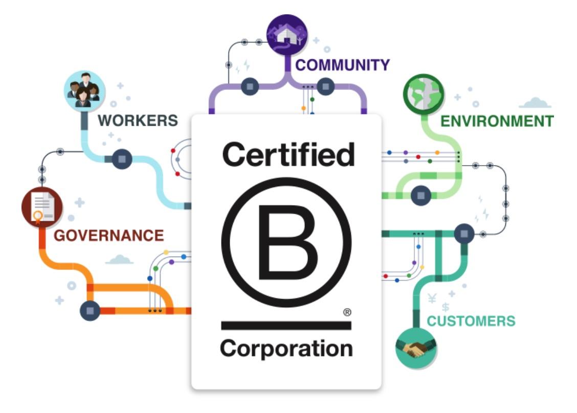 B Corps bcorps voorbeeld uitleg sociaal ondernemen Birdwing Digital
